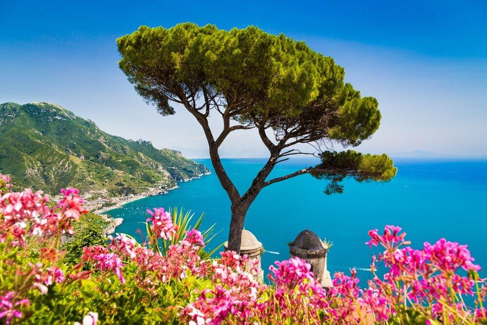 Capri Hakkında