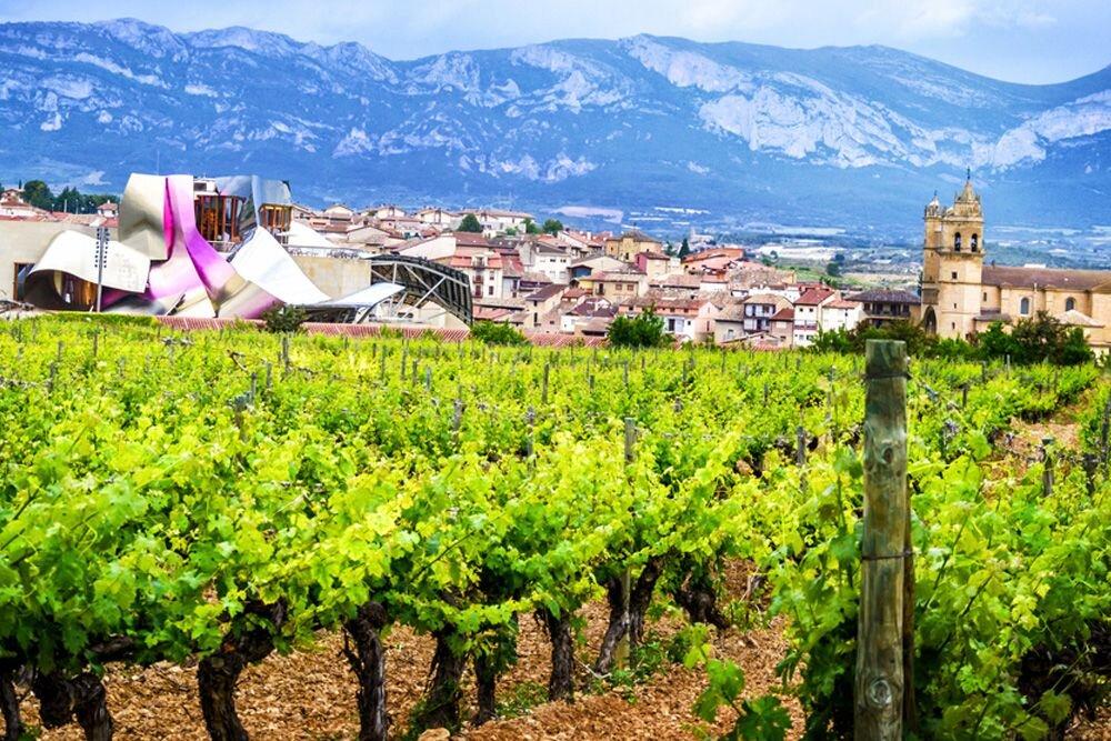 Rioja Hakkında
