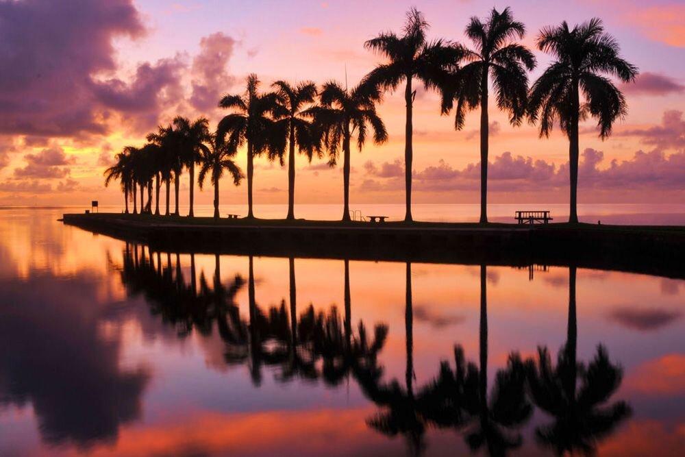 Miami Hakkında