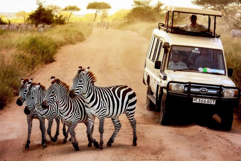 Tanzanya Hakkında