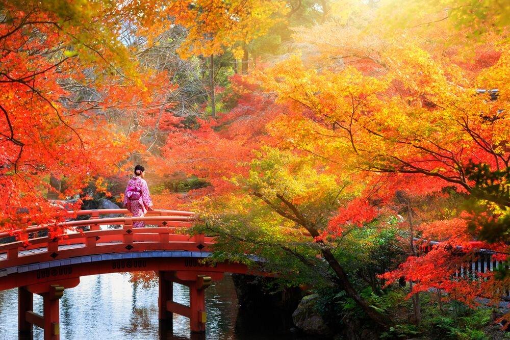 Güney Kore - Japonya Turları